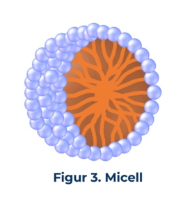 figur3 Micell