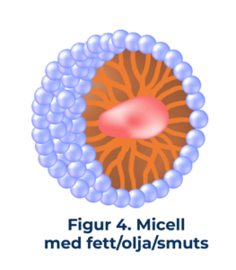 figur4 Micell med fett/olja/smuts